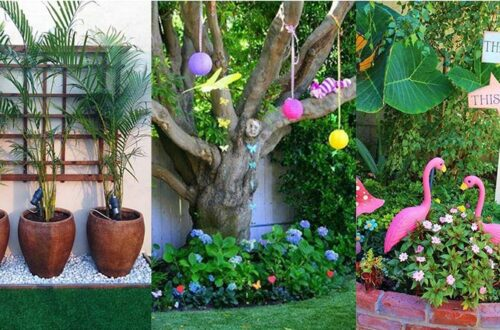 How to make a beautiful flower garden in front of the house